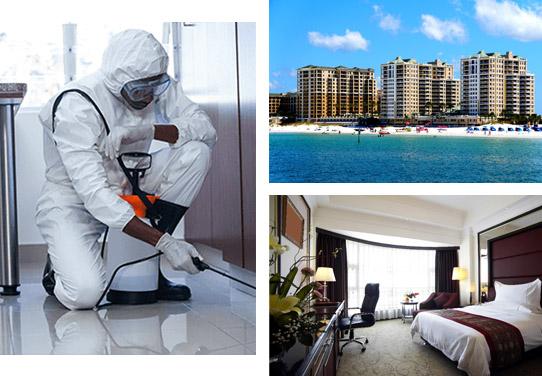 Pest Control & Inspection In Florida, Home Pest, Patriot Pest Services